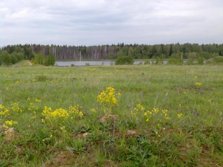 Пятницкое ш.,(Волоколамское ш.) 33 км от МКАД, д. Адуево